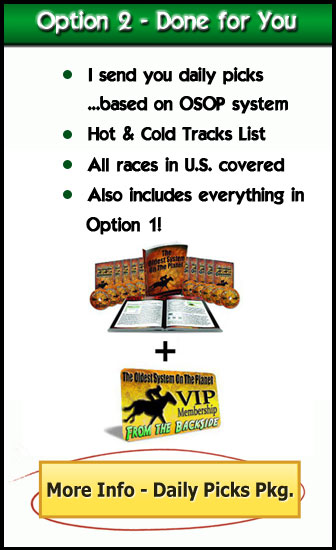 horse racing system VIP