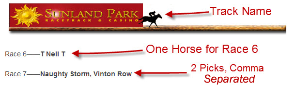 horsepicks2